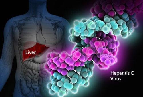 Борьба с вирусным гепатитом С при помощи передового медикамента Гепцинат
