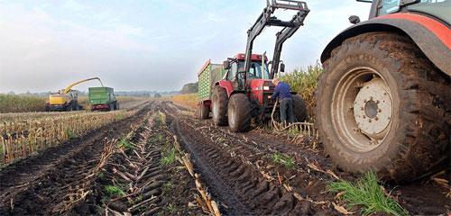 Сельское хозяйство России, итоги 2017 года