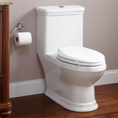 Особенности использования унитаза-компакт в ванной комнате