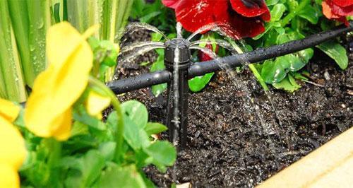 Как лучше поливать сад