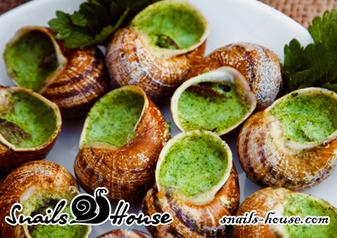 Улитки – полезный деликатес