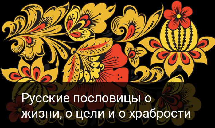 Русские пословицы о жизни, о цели и о храбрости