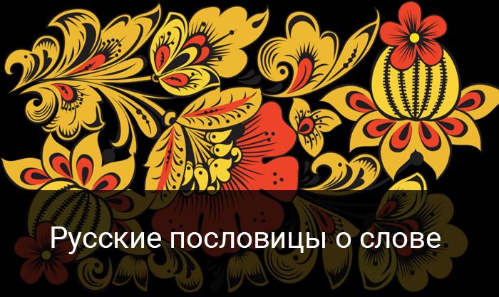Русские поговорки о пословицах и поговорках