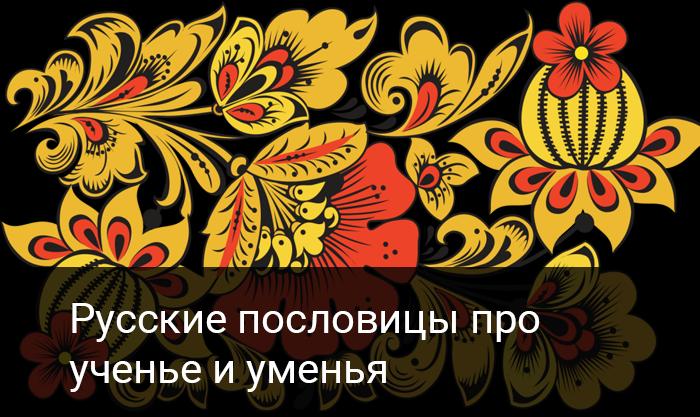 Русские пословицы про  ученье и уменья