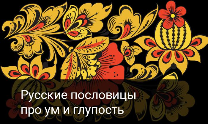 Русские пословицы   про ум и глупость