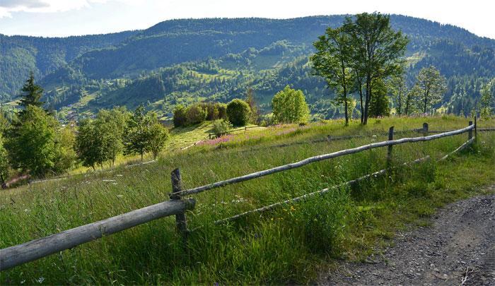 Какие условия отдыха предлагает курорт Славское в Карпатах