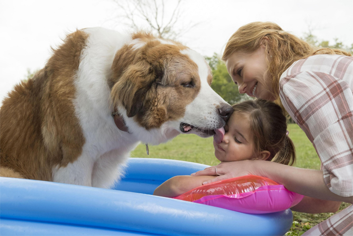 Пёс считает малышку СиДжей продолжением своего хозяина Итана