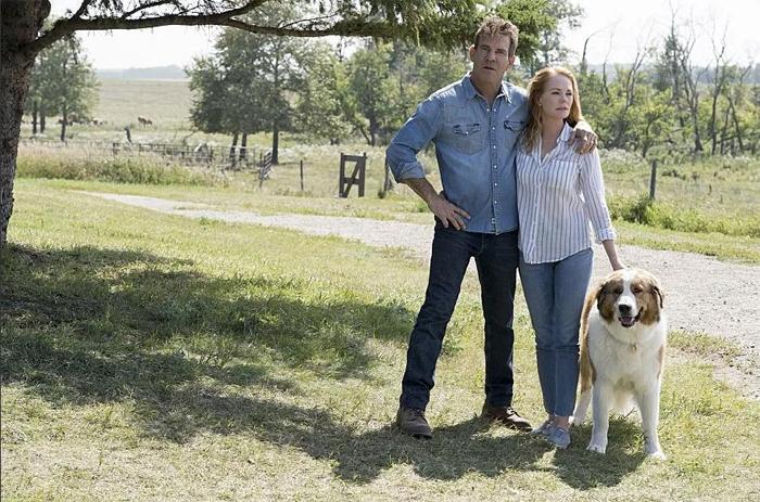 В основном съёмки фильма «Собачья жизнь 2» проходили на просторах Канады