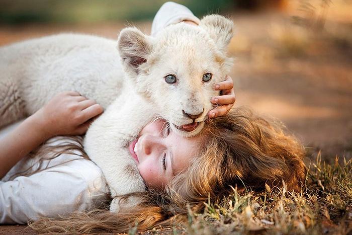 «Миа и белый лев» - фильм режиссера Жиля де Мэтра