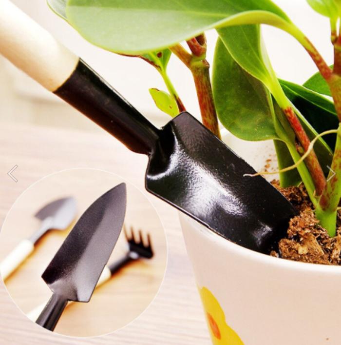 Чем пора запастись садоводу?