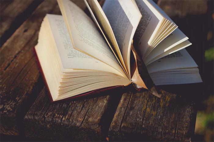 Где купить интересные качественные книги для малышей и взрослых?
